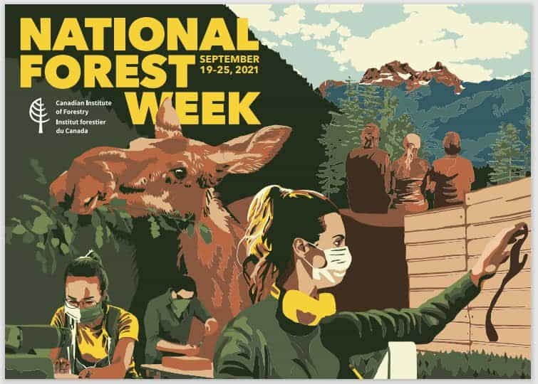 national forests week